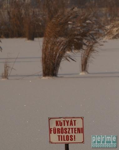 Bujtosi tó Nyíregyháza